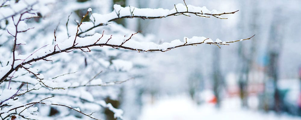 Your comprehensive property maintenance checklist for Winter